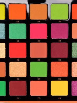 Anastasia – Paleta de Sombras Norvina Pro Pigment Palette Vol. 3